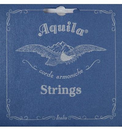 Aquila 145C